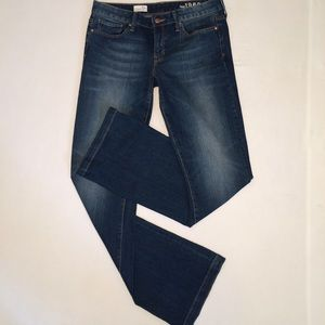 GAP 1969 Premium Long & Lean Plus Sized Jeans